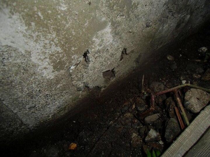 外壁 ジャンカ 施工前